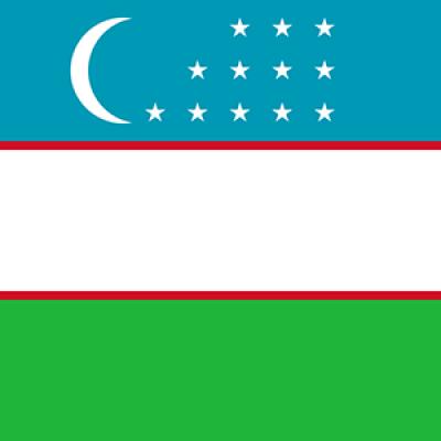 Üzbegisztán flag